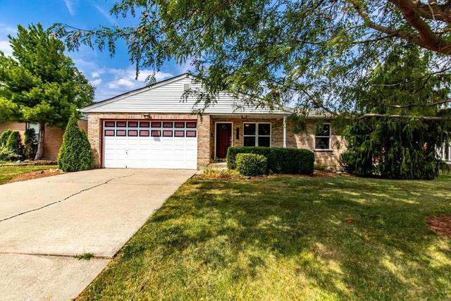 3698 Western Northern Boulevard, Cheviot, OH 45211 (MLS #1713780) :: Apex Group