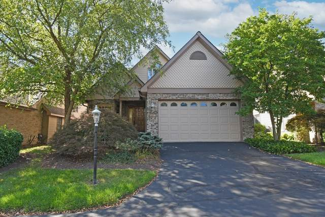 8851 Montgomery Road #6, Sycamore Twp, OH 45236 (#1715262) :: The Chabris Group