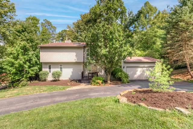 6906 Treeridge Drive, Anderson Twp, OH 45244 (#1715929) :: The Chabris Group