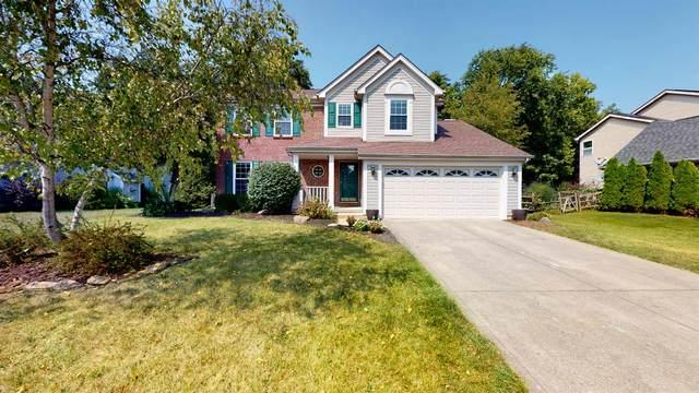 4585 Hallandale Drive, Union Twp, OH 45103 (#1716013) :: Century 21 Thacker & Associates, Inc.