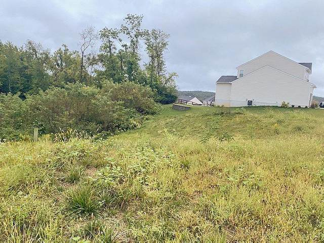 7109 Fort Scott Boulevard, Crosby Twp, OH 45030 (#1716739) :: The Susan Asch Group