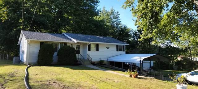 1006 Lorelei Drive, Perry Twp, OH 45118 (MLS #1717148) :: Apex Group