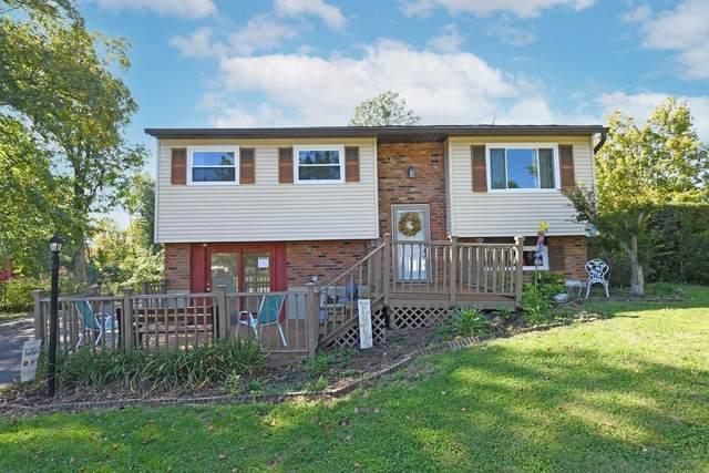 3851 Witham Woods Drive, Union Twp, OH 45245 (#1717601) :: Century 21 Thacker & Associates, Inc.
