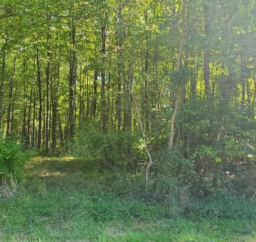 12950 Locust Ridge New Harmony Road, Pike Twp, OH 45176 (#1719601) :: The Susan Asch Group