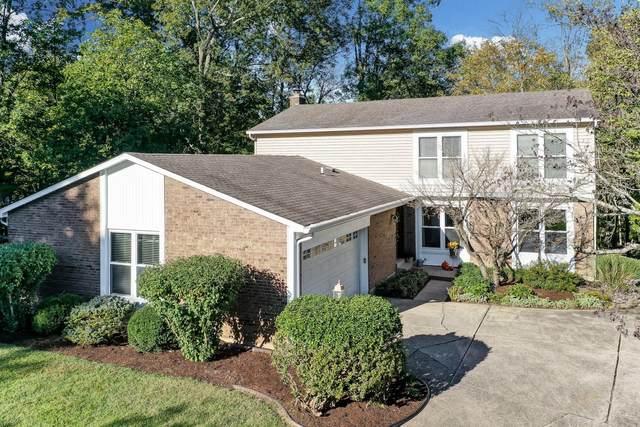 10608 Buttercreek Lane, Montgomery, OH 45249 (MLS #1719713) :: Apex Group