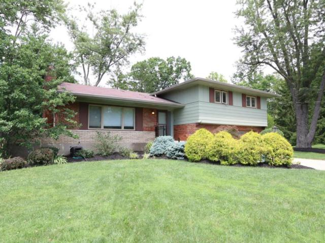 544 Tohatchi, Wyoming, OH 45215 (#1546761) :: The Dwell Well Group