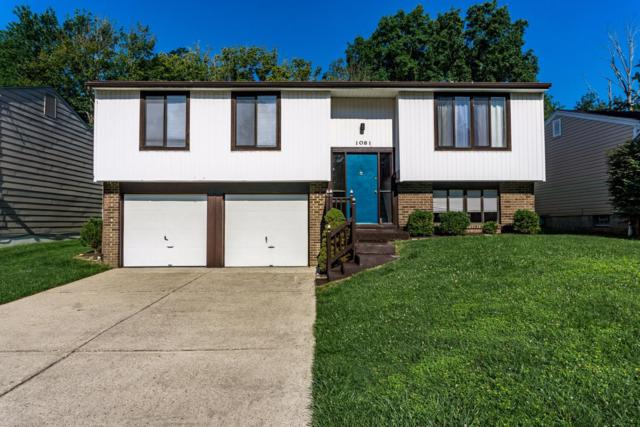 1081 Bruce Avenue, Cincinnati, OH 45230 (#1546836) :: The Dwell Well Group