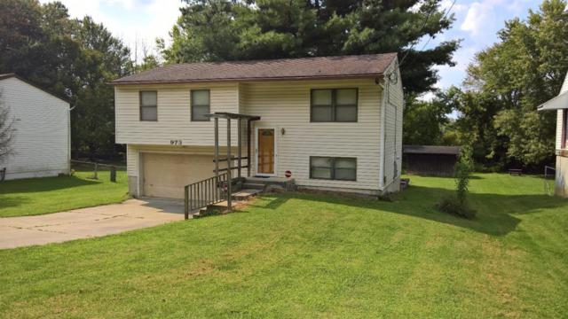 973 Old Us Rt 52, New Richmond, OH 45157 (#1554214) :: The Dwell Well Group
