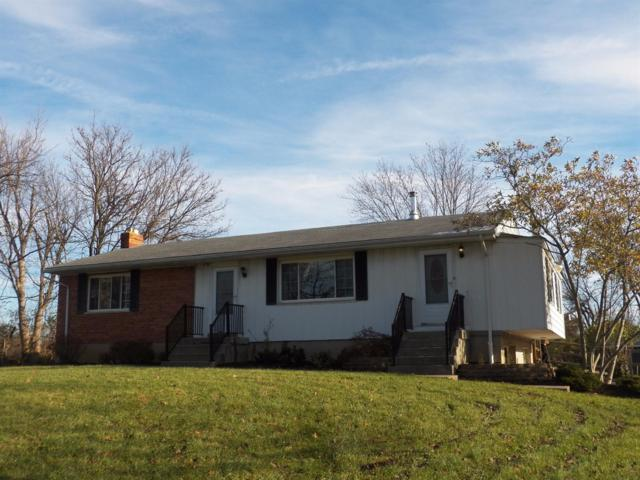 10236 Hamilton Avenue, Springfield Twp., OH 45231 (#1560901) :: The Dwell Well Group