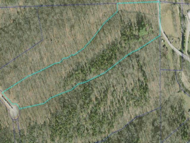 4 Williams Retreat Road, West Harrison, IN 47060 (#1572642) :: Bill Gabbard Group