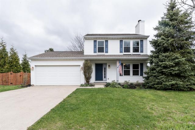 684 Bluebird Drive, Union Twp, OH 45244 (#1575685) :: The Dwell Well Group