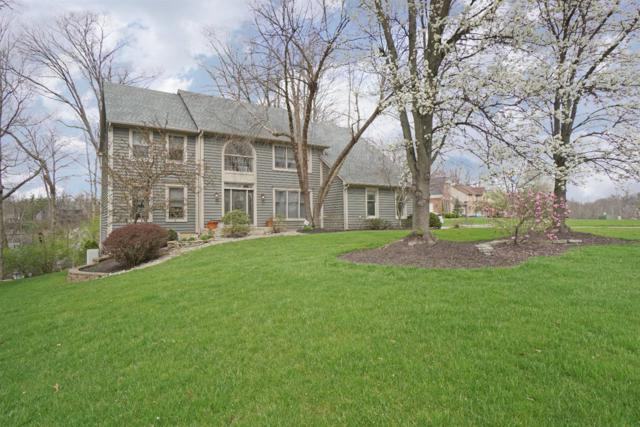 8996 Terwilligers View Court, Symmes Twp, OH 45249 (#1575934) :: Team Synergi