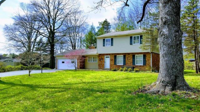 10789 Trailside Lane, Montgomery, OH 45242 (#1575982) :: The Dwell Well Group