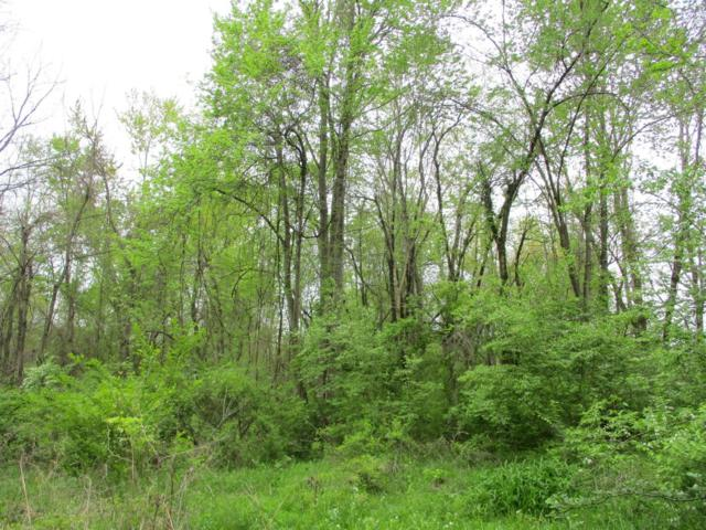 0-4.15ac St Rt 133, Wayne Twp, OH 45162 (#1576123) :: The Dwell Well Group