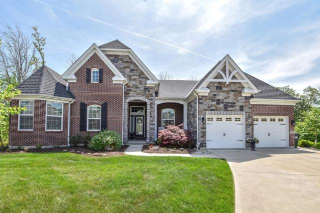 230 Edgefield Drive, Cleves, OH 45002 (#1579793) :: Bill Gabbard Group