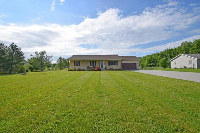 7565 Whitacre Road, Harlan Twp, OH 45107 (#1582783) :: Bill Gabbard Group