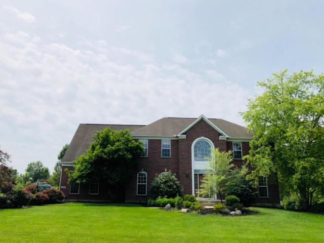 5669 Bentwood Drive, Mason, OH 45040 (#1583745) :: The Dwell Well Group