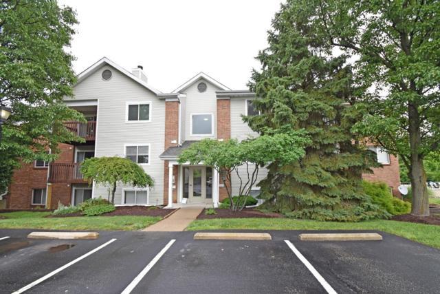 9319 Winton Road #9, Springfield Twp., OH 45231 (#1583865) :: Bill Gabbard Group