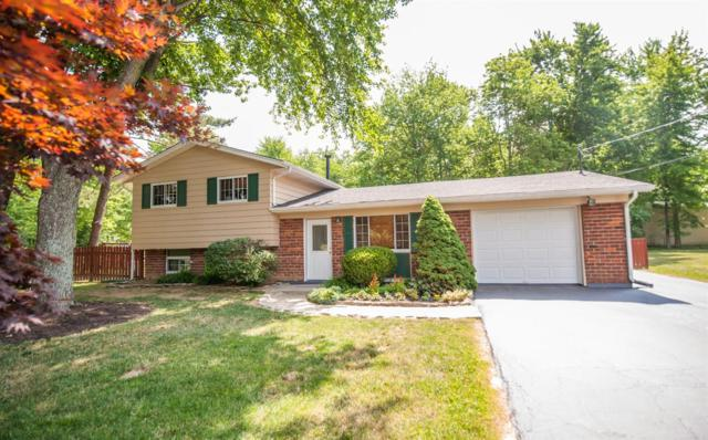 230 Amelia Olive Branch Road, Batavia Twp, OH 45102 (#1584668) :: Bill Gabbard Group