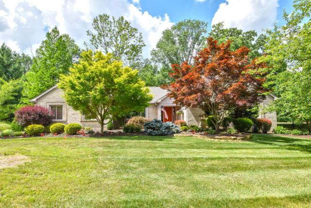 8394 Greenleaf Drive, Anderson Twp, OH 45255 (#1584723) :: The Dwell Well Group