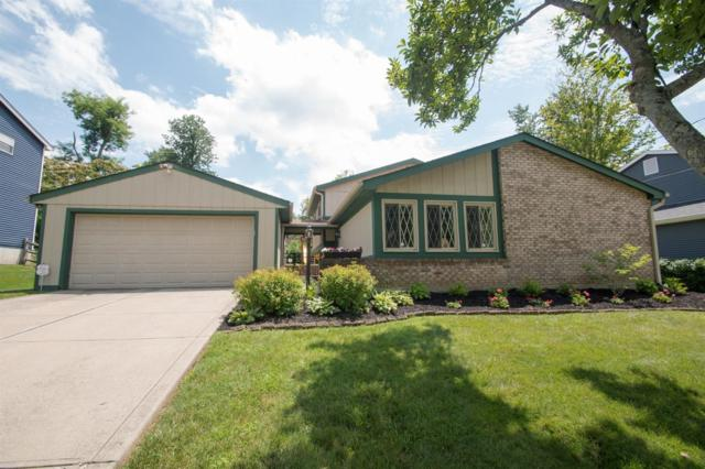 6365 Birchdale Court, Anderson Twp, OH 45230 (#1585204) :: The Dwell Well Group