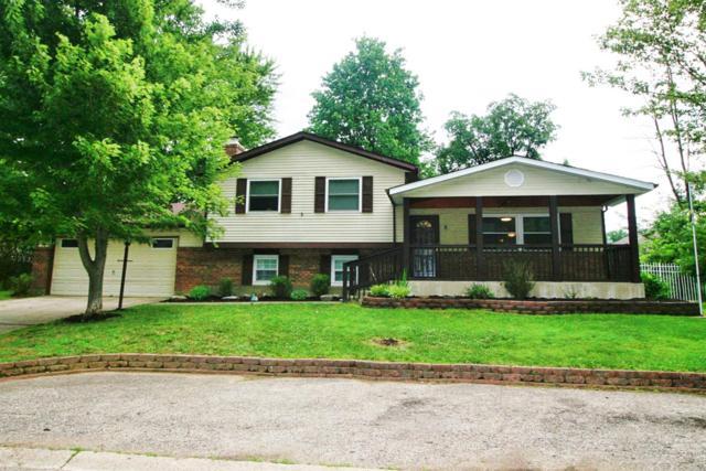 201 Deer Creek Drive, Amelia, OH 45102 (#1585244) :: The Dwell Well Group