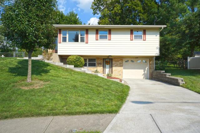 116 Biscoe Drive, Reading, OH 45215 (#1596993) :: Bill Gabbard Group