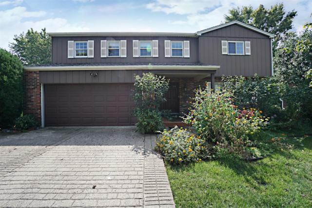 697 Yorkhaven Road, Springdale, OH 45246 (#1597069) :: Bill Gabbard Group