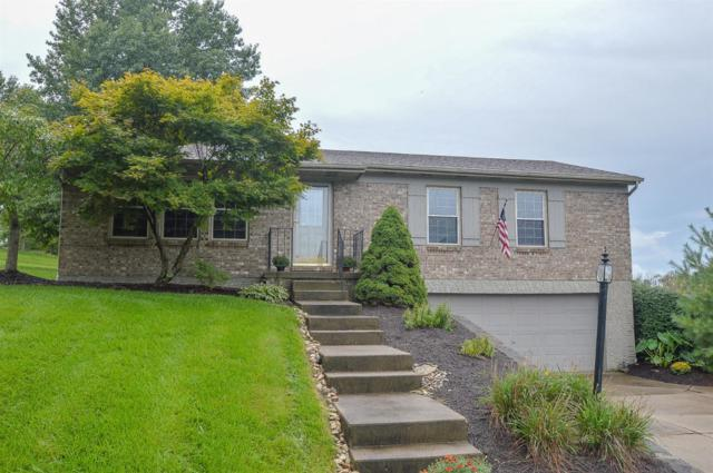 6751 Gaines Road, Colerain Twp, OH 45247 (#1598230) :: Bill Gabbard Group