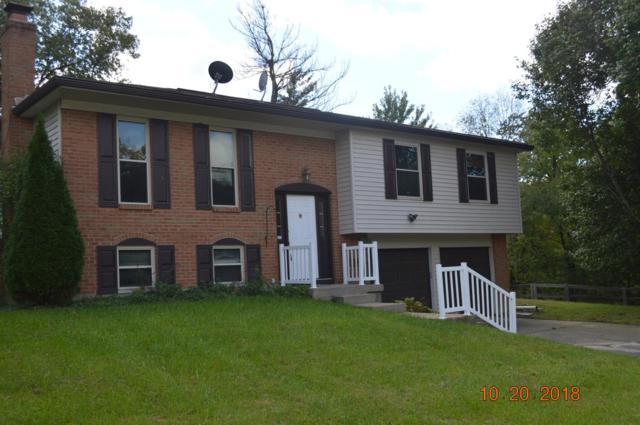 1764 Rusticwood Lane, Anderson Twp, OH 45255 (#1600468) :: Bill Gabbard Group