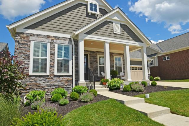 10518 Sundance Court, Blue Ash, OH 45241 (#1608834) :: Chase & Pamela of Coldwell Banker West Shell