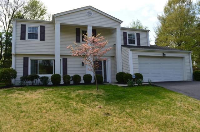 5796 Shady Hollow Lane, Anderson Twp, OH 45230 (#1618678) :: Chase & Pamela of Coldwell Banker West Shell