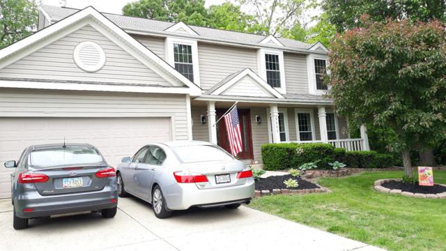 6441 Damson Drive, Clayton, OH 45315 (#1623247) :: Chase & Pamela of Coldwell Banker West Shell