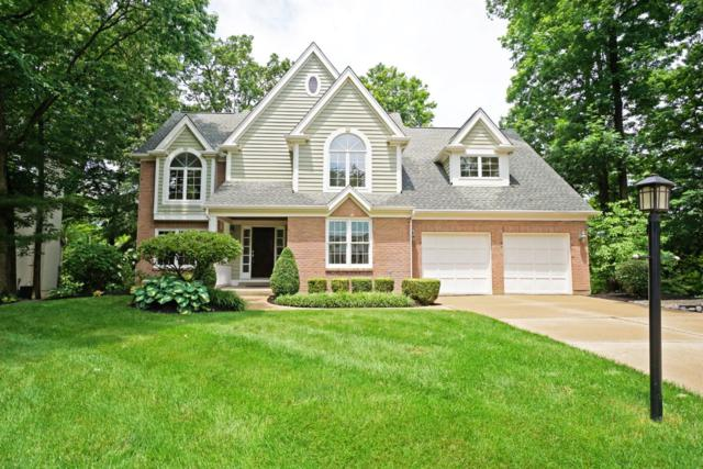 148 Lakeview Court, Loveland, OH 45140 (#1626553) :: Drew & Ingrid | Coldwell Banker West Shell