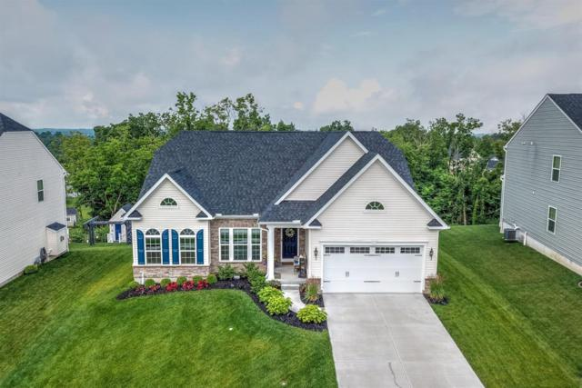 8577 Forest Valley Drive, Colerain Twp, OH 45247 (#1627049) :: Drew & Ingrid | Coldwell Banker West Shell