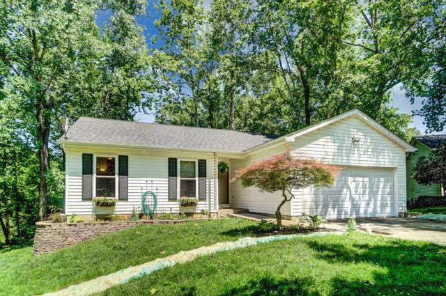 6 Edam Court, Liberty Twp, OH 45044 (#1627561) :: Chase & Pamela of Coldwell Banker West Shell