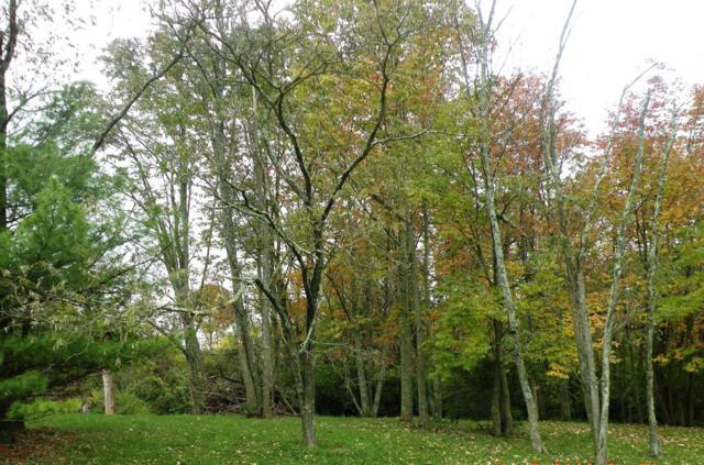 0 Greenlawn Way, Lawrenceburg, IN 47025 (#1630168) :: The Chabris Group