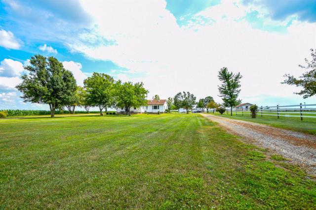 6129 Palmer Road N, Jasper Twp, OH 43160 (#1632740) :: The Chabris Group