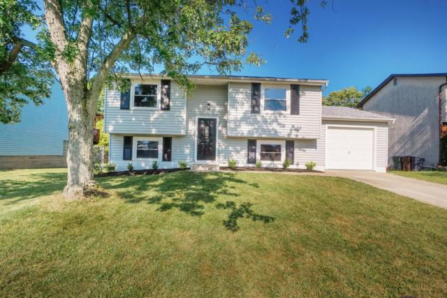 11899 Hitchcock Drive, Forest Park, OH 45240 (#1633320) :: Drew & Ingrid | Coldwell Banker West Shell