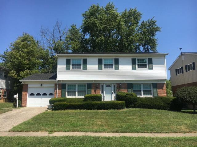 5536 Cove Court, Delhi Twp, OH 45238 (#1633622) :: Drew & Ingrid | Coldwell Banker West Shell