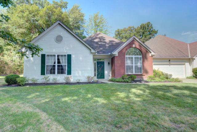 103 Traverse Creek Drive, Miami Twp, OH 45150 (#1633664) :: Chase & Pamela of Coldwell Banker West Shell