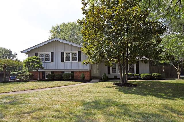 10623 Cinderella Drive, Montgomery, OH 45242 (#1637799) :: Chase & Pamela of Coldwell Banker West Shell