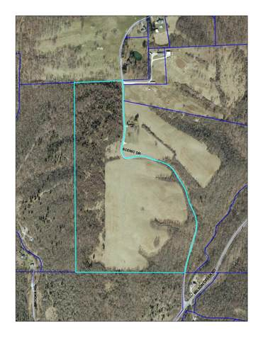 0 Scenic Drive, Lawrenceburg, IN 47025 (#1655130) :: The Chabris Group