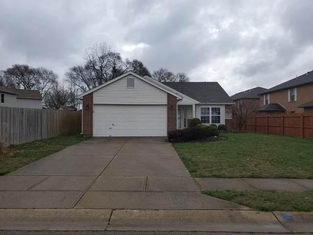 336 Park Drive, Trenton, OH 45067 (MLS #1657704) :: Ryan Riddell  Group