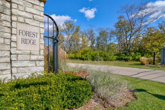 5833 Hickory Wood Court, Oxford Twp, OH 45056 (#1657721) :: The Chabris Group