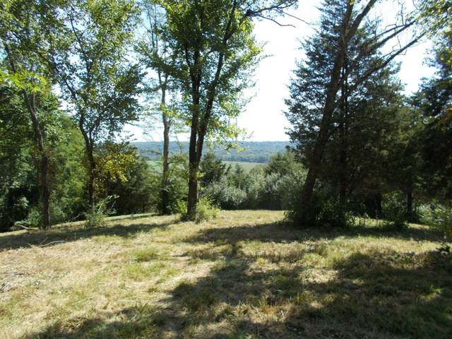 0-64.9ac Pinhook Road, West Harrison, IN 47060 (#1662219) :: The Chabris Group