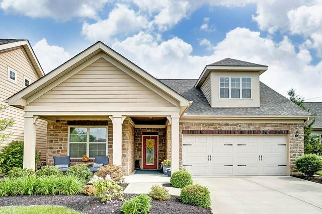 8203 Park Place Circle, West Chester, OH 45069 (#1663016) :: The Chabris Group