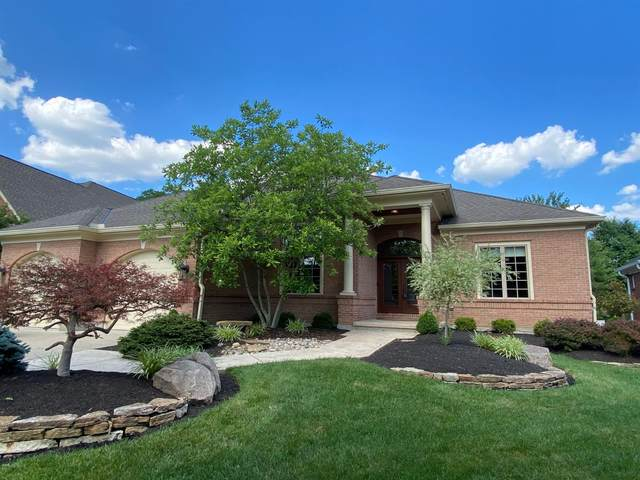 11782 Wingate Lane, Sycamore Twp, OH 45249 (#1667111) :: The Chabris Group