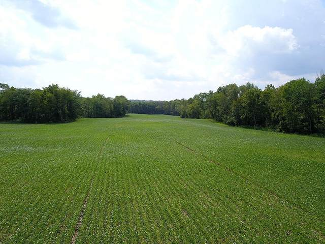 0 S Walnut Creek Road, Perry Twp, OH 43160 (#1668074) :: The Chabris Group