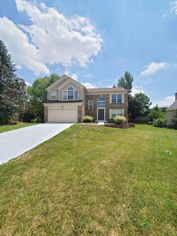 9949 Voyager Lane, Colerain Twp, OH 45251 (#1669464) :: The Chabris Group